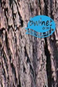 bwlnet-cinnamon