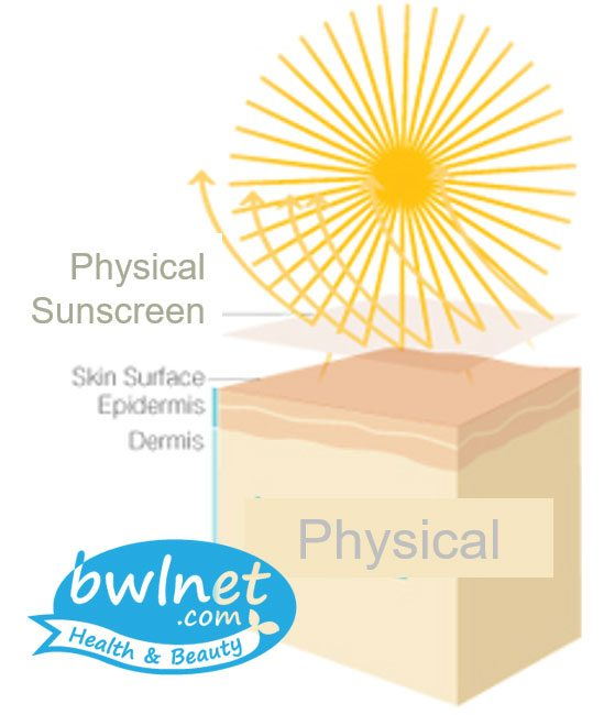 bwlnet-physical-sunscreen