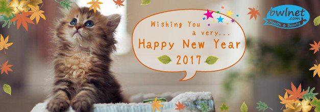 bwlnet-seasons-greeting-new-year-2017