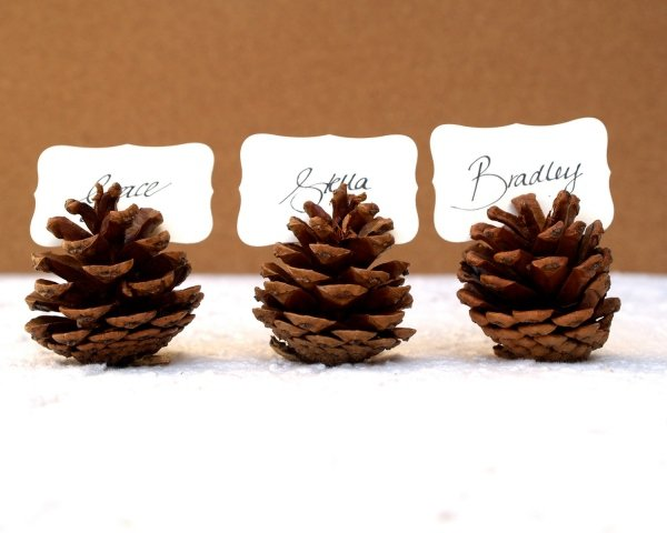 pinecone-place-setting-minimalisti