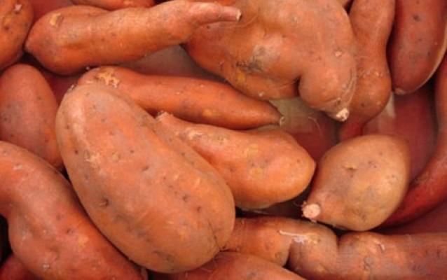 Věděli jste, že batáty patří k nejvýživnějším druhům zeleniny vůbec?