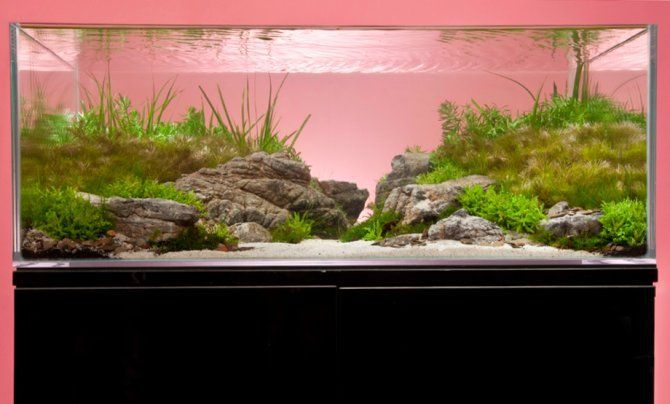 Jaký stolek zvolit pod akvárium?