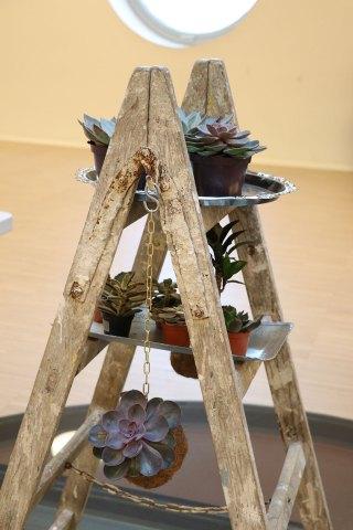 Kokedama DIY workshop byDuhn KU:BE Frederiksberg AOF planteplaneter