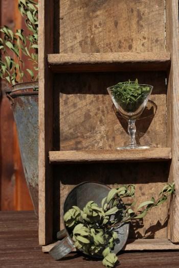 Tørring af krydderurter - tør din egen porse til efterårets retter
