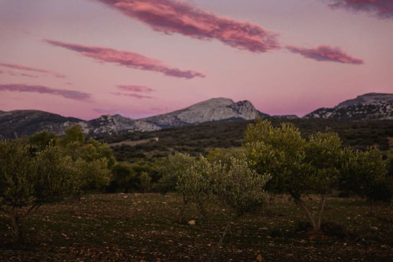 Licht-und-Farbe – Sunset