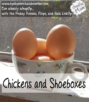 Chickens and Shoeboxes