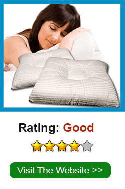 Visit SNoreless Pillow Website