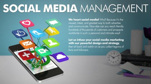 Maximize Your Social Media Output