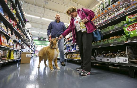 Pet Supplies Plus Neighbor