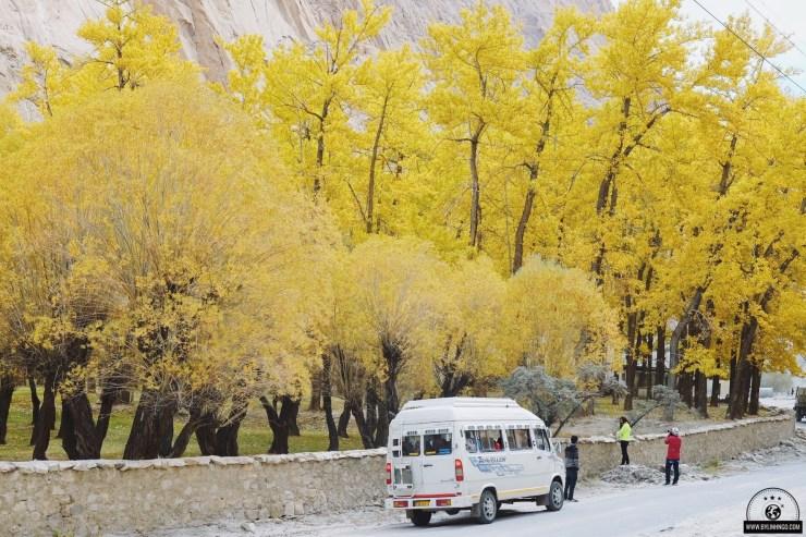 lịch trình du lịch Ladakh
