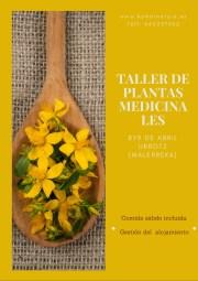 Taller de plantas medicinales abril 2017
