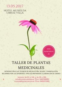 Taller de plantas medicinales Urroz Villa