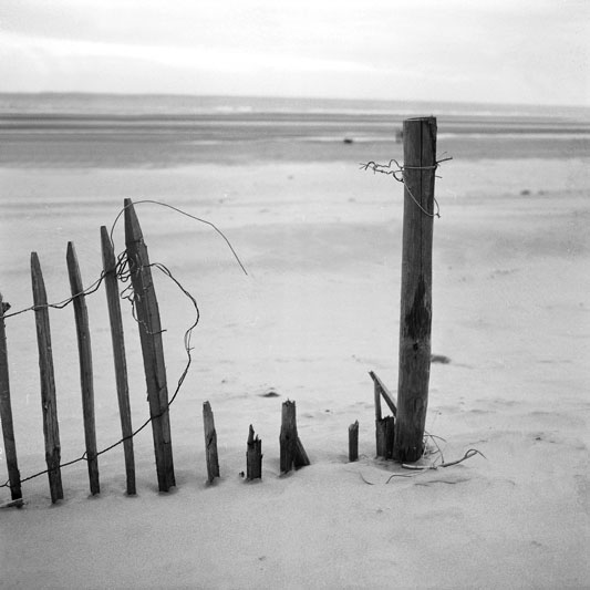 Dans-les-Dunes-de-Bray-Dunes-001