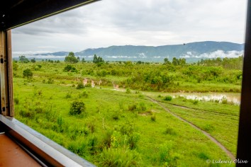 View from the Tazara train