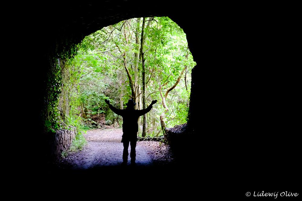 Tunnel in los tilos