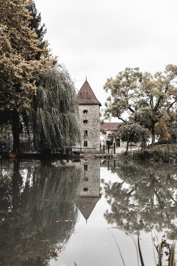Un séjour ou un week-end au Château de Chapeau Cornu vers Lyon - La parc arboré et son étang