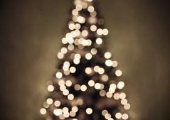 Go Deep With Christmas Trees