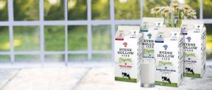 BD Carousel Org milk Daisies r1 - BD_Carousel_Org_milk_Daisies_r1