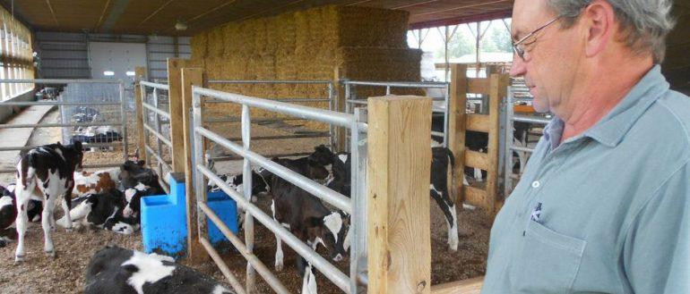 Doubledale Farm header - Doubledale Farm