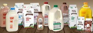 Fresh Dairy - Fresh Dairy