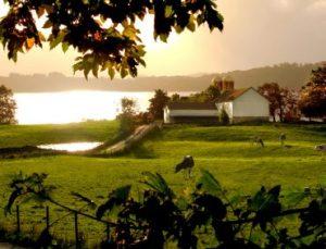 Upstate Niagara Byrne Dairy join Grown Certified program image 300x229 - Upstate Niagara, Byrne Dairy join Grown & Certified program