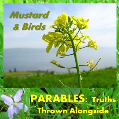 mustard and birds