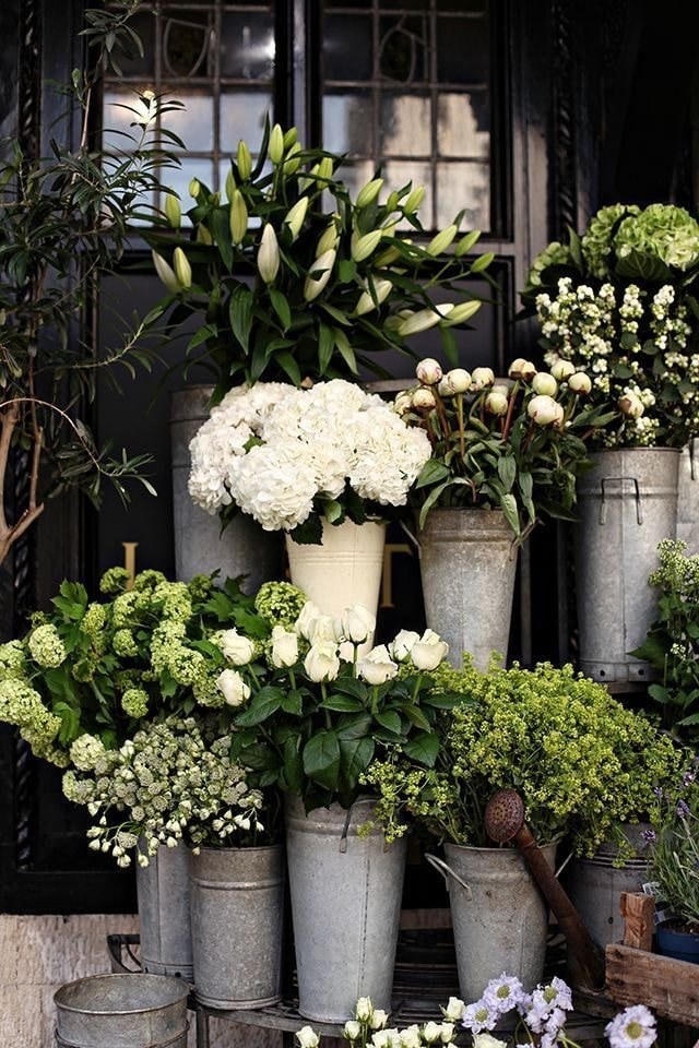 various white and green flowers in zinc buckets