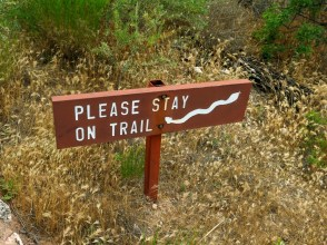 Stay On The Trail