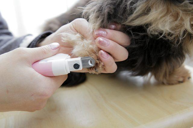 POBO ペット用爪切り