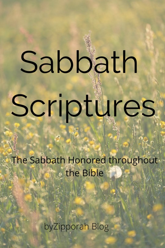 Scriptures on the Sabbath – Blessings and the Law