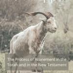 atonement in the Torah