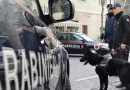 Cocaina e marijuana in Val Passiria, doppia operazione dei carabinieri