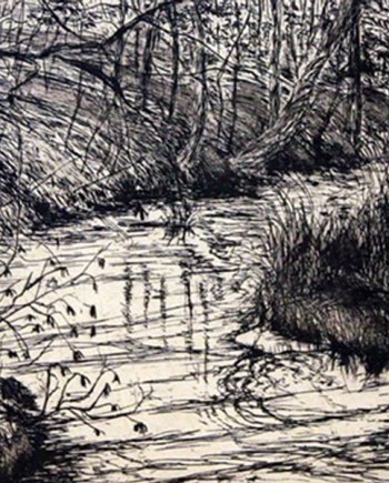 Pigeon Creek etching by Lee Ann Frame