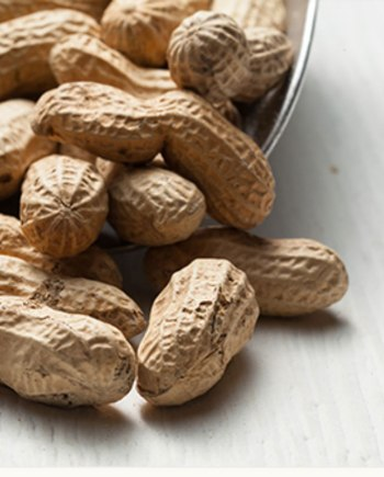 Roasted Peanuts in a canvas bag by Fortinos Gourmet