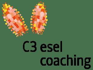 c3 Eselcoaching für Führungskräfte und Teams
