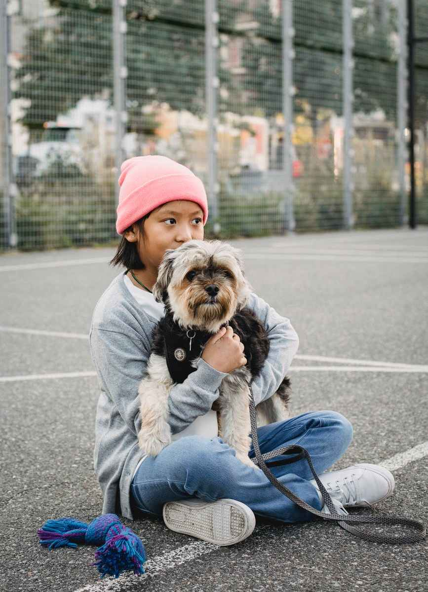 dreamy asian boy embracing yorkshire terrier on sports ground