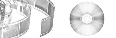 C41 Film Processing Negative Scan Picture