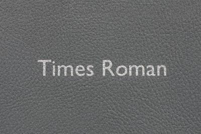 Times Roman - Vinyl - SILVER