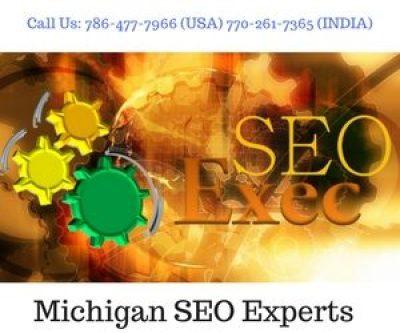 Michigan SEO Experts
