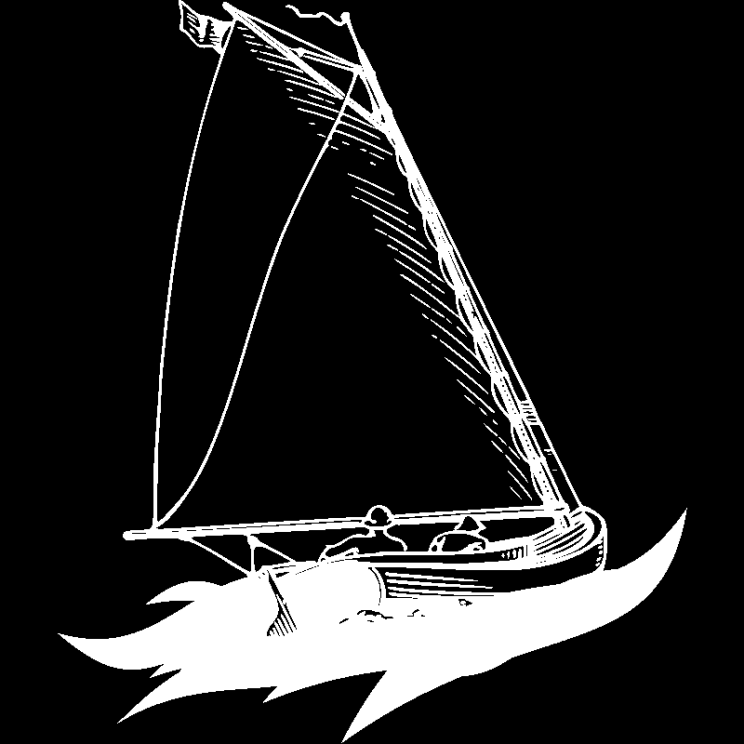 Boat in waves illustration