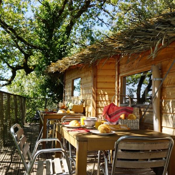 Cabane dans les arbres Cantal Auvergne petit déjeuner