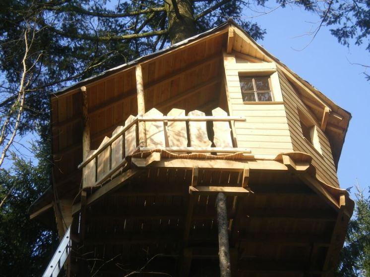 La cabane Falbala est située à 9 m de haut sur un douglas. L'accès se fait par une échelle de papou sécurisée avec un harnais et un stop chute
