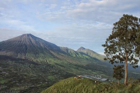 Bukit Pergasingan COS Lombok 2