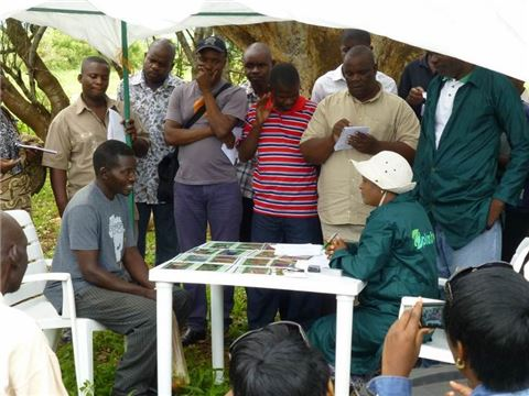 A trainee plant doctor interviewing a farmer at the Namanongo Plant Clinic in Chongwe district, Zambia