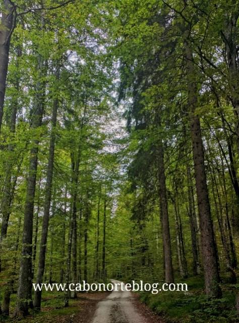 Parque Nacional de Triglav (Eslovenia)