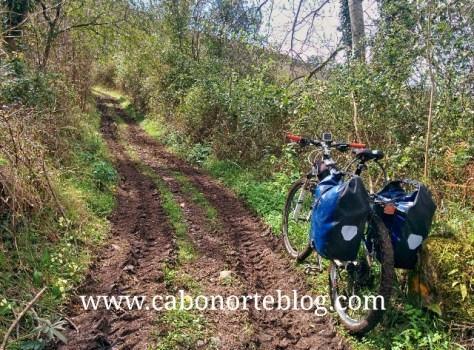 Camino de Santiago, camino Primitivo