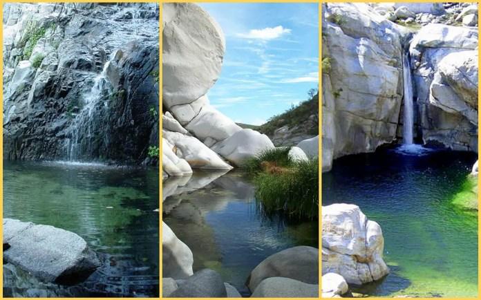 Sierra de la Laguna, reserva de agua de Cabo