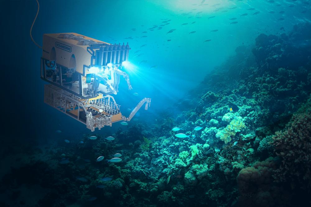 ROV exploring a seamount