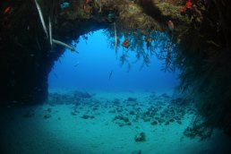 Dive sites 3grotes Cabo Verde5