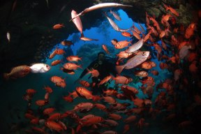 Dive sites 3grotes Cabo Verde6